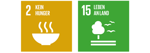 Global Goals Verantwortung Gesellschaft.png