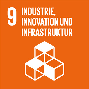 SDG icon DE 09.jpg
