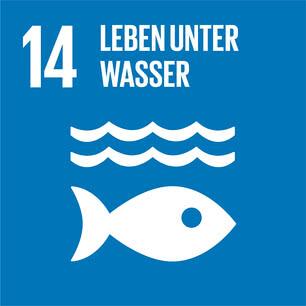 SDG icon DE 14.jpg