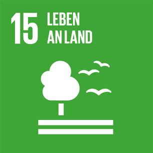 SDG icon DE 15.jpg