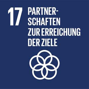 SDG icon DE 17.jpg