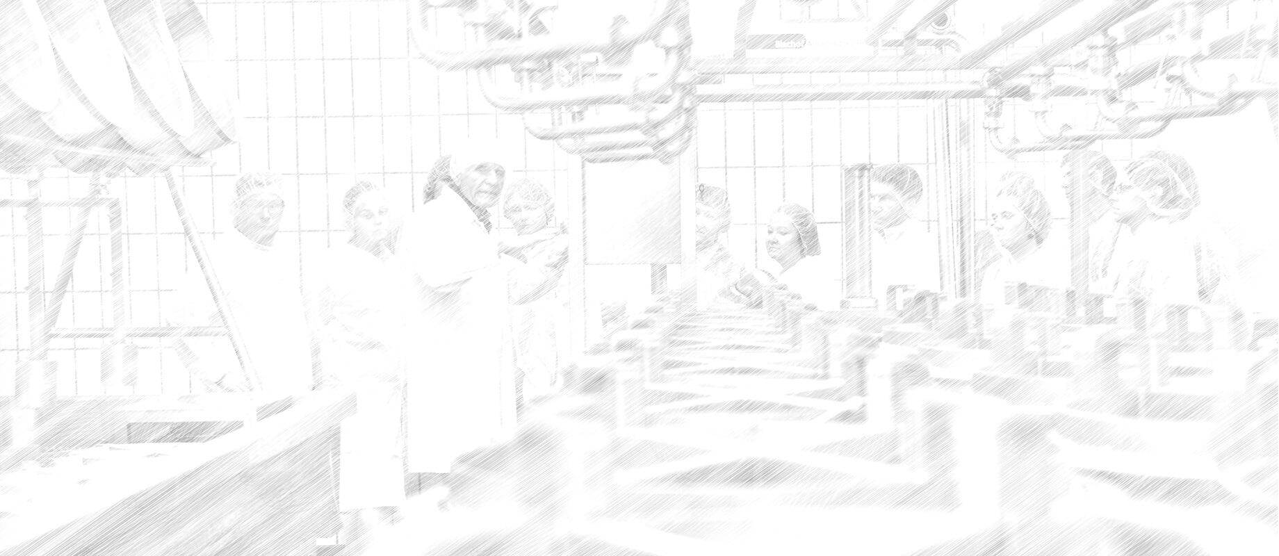 Seminar Schraffur 0110 4000x1740.jpg