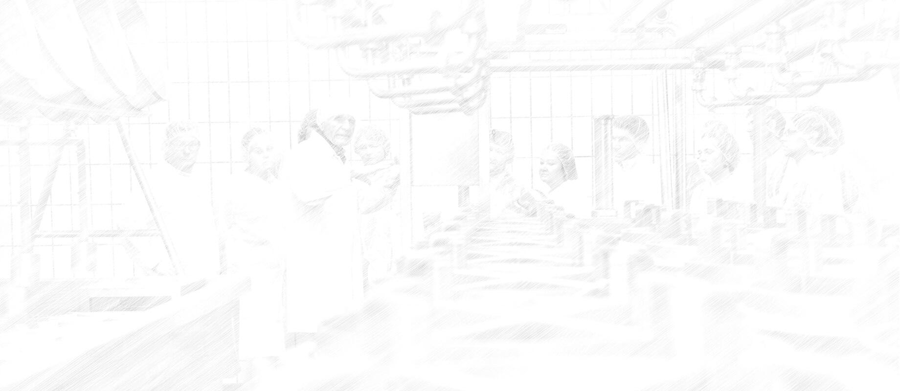Seminar Schraffur 4000x1740